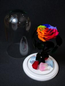 Ziua Indragostitilor, mare zarva in florarii. Ce se cumpara de Sf. Valentin?